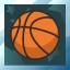Basketball Platinum