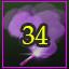 Jumper 269