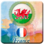 France - Wales