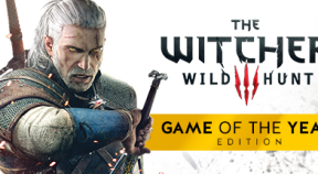 the witcher 3  wild hunt game of the year edition steam achievements