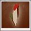 Palestinian Freedom