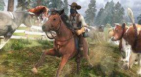 cowboy horse farm racing google play achievements