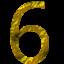 6 Gold
