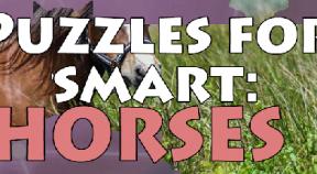 puzzles for smart  horses steam achievements