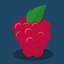 Binary Dash Raspberry