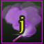 Jumper 113