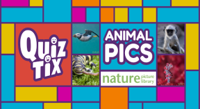 quiztix  animal pics google play achievements
