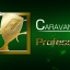 CARAVAN MODE 150,000 points