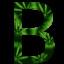 B Weed