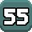 Level 55